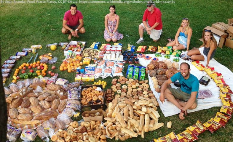 Rob Greenfield food waste collected from grocery dumpers.2014