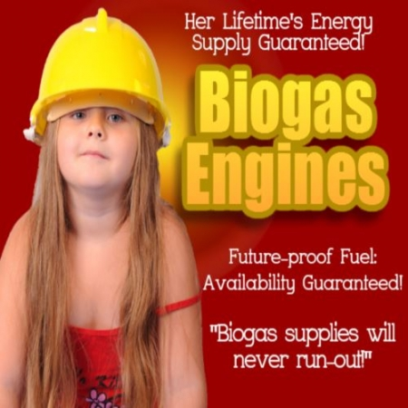 Biogas Engines Run On A Futureproof Fuel: Her Lifetimes Energy Could Be Guaranteed...