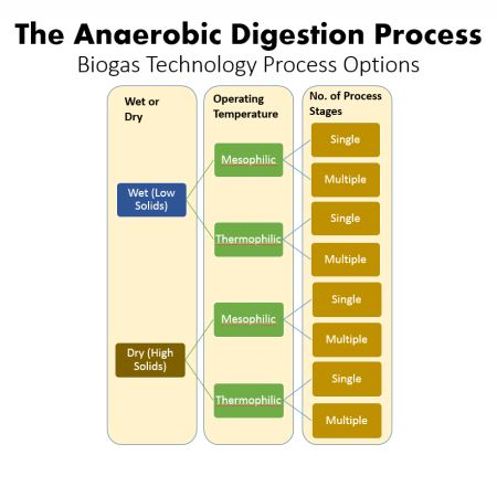Anaerobic Digestion Process Option Diagram