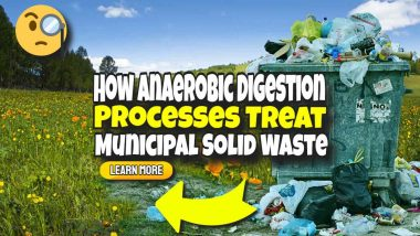 """Image text: """"How Anaerobic Digestio Processes Treat MSW""""."""