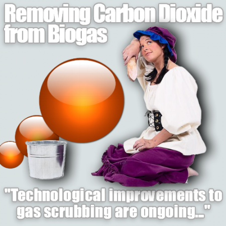 Meme cartoon about How to remove Carbon Dioxide from biogas.