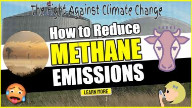 """Image text: """" How to Reduce Methane Emissions""""."""