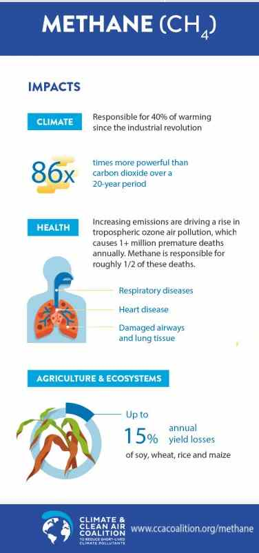 Infographic which  illustrates: Methane Emission's Global Warming Main Impacts