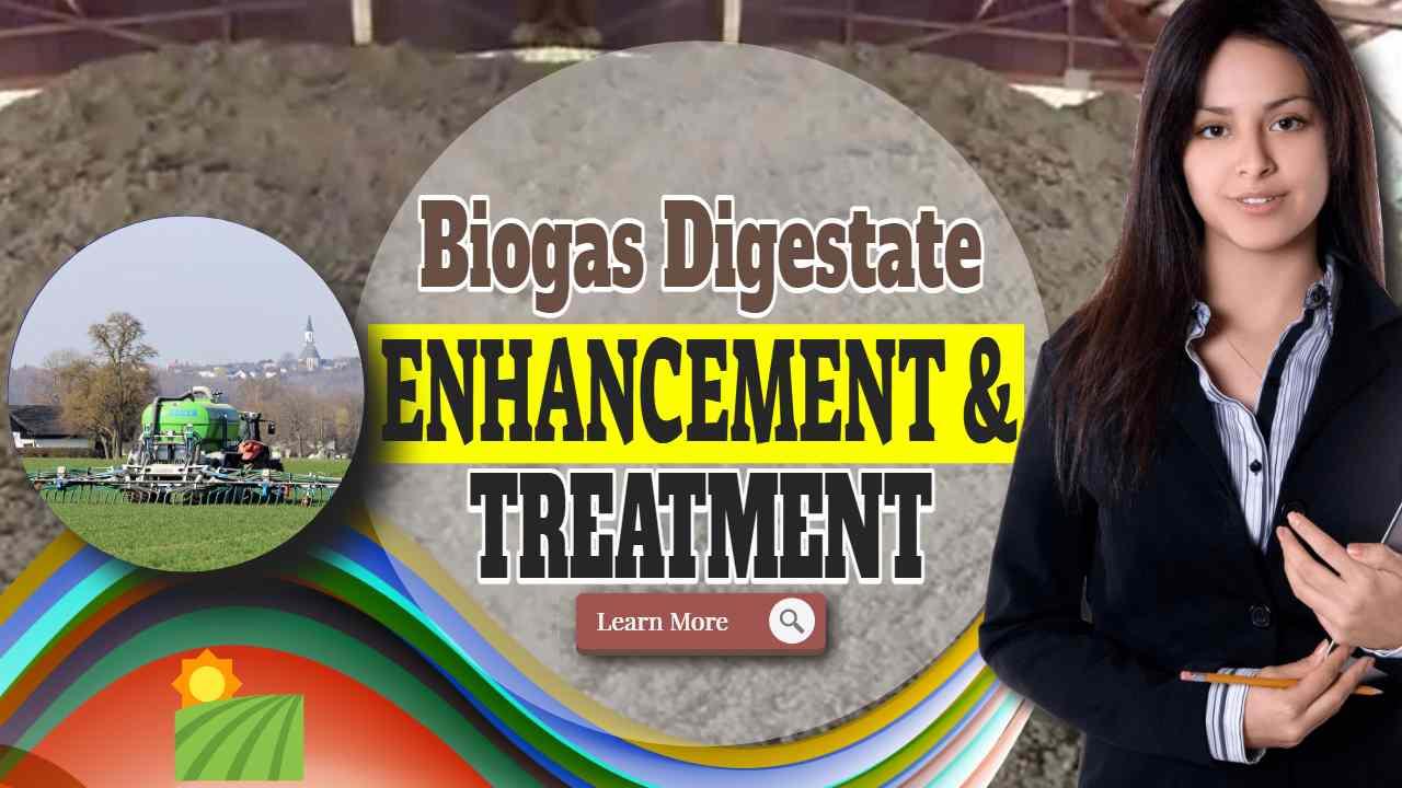 Biogas Digestate enhancement