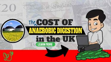 """Image text: """"The Cost of Anaerobic Digestion in the UK""""."""