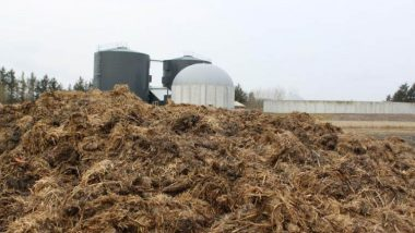 Feedstock storage for anaerobic digestion plants