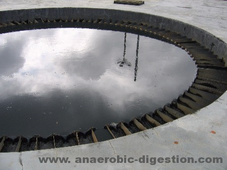 Distribution in a UASB used in anaerobic digestion in wastewater