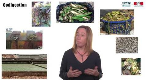 Codigestion illustrated as an example of innovation in anaerobic digestion.