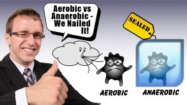Image is the aerobic digestion and anaerobic digestion article thumbnail.