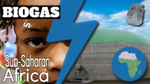 "Image text: ""Biogas in Sub-Saharan Africa""."