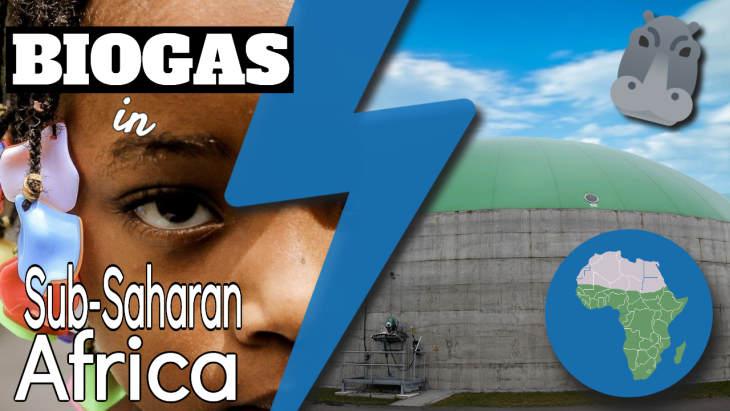 "Image text: ""Biogas in Sub-Saharan Africa""."