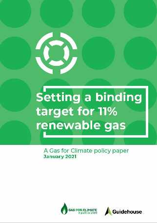 Report cover recommends EU Biomethane set at 8% of an 11% total target Eu wide.