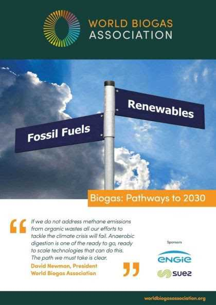 WBA report cover: Biogas pathways to 2030