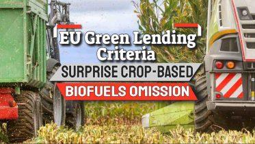 "Image text: ""EU Sustainable Lending Criteria""."