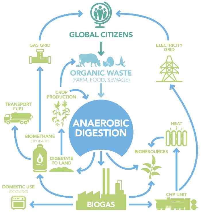 The WBA - organic waste diagram.